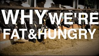 Why your Body makes you Fat AND Hungry | (Food & Weight Gain Part 2)