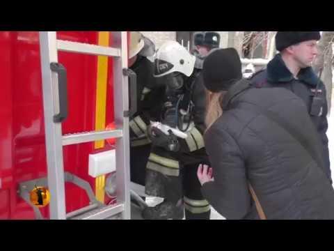 23 авг 2017. Вк: https://vk. Com/bobcattv поддержать канал можно здесь: http://www. Donationalerts. Ru/r/bobcatlynx здесь еще больше питомцев: