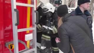 Пожарные спасли кота в Волгограде – вынесли из горящего подъезда, дали кислород и сделали массаж.