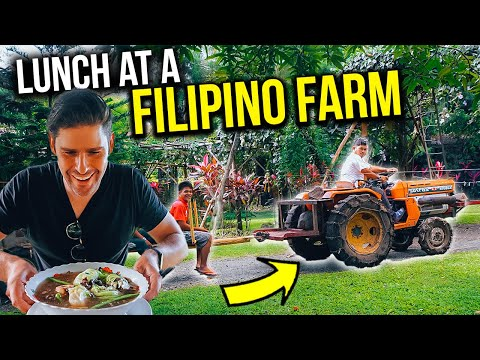 Eating the BEST BULALO of our life at a FILIPINO FARM!