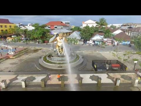 Indonesia Bagus - Lestarikan Bekantan Khas Kalimantan