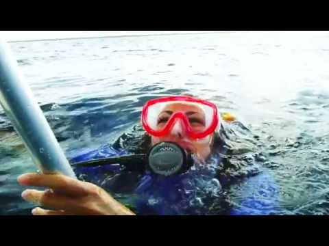 Reactivate - Scuba Refresher