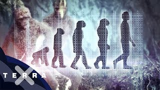 Warum lernte der Mensch laufen? | Neue These