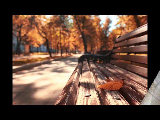 Изображение предпросмотра прочтения – ЛюдмилаБанникова читает произведение «Какая холодная осень!» А.А.Фета
