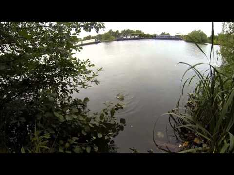 Waking For Pike On Macc Canal 21/09/2013