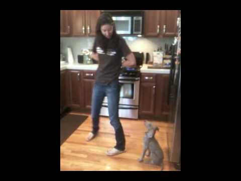 Kira Weimaraner Puppy Tricks 10 weeks