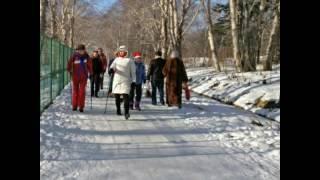 Вэлнэс прогулка 25 декабря