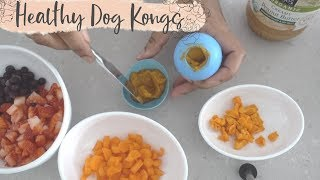 Healthy Frozen Stuffed Kongs & Dog Freezer Storage Ideas