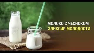 Молоко с чесноком - тибетский эликсир молодости
