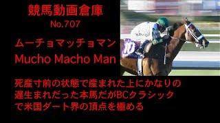 【競馬】ムーチョマッチョマン Mucho Macho Man【No 707】