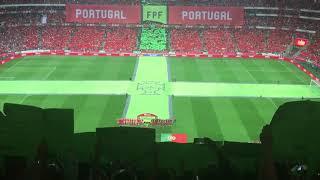 Baixar Arrepiante: Estádio da Luz canta hino nacional