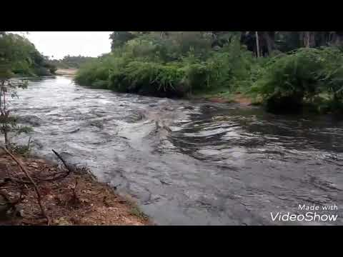 Noyyal river Overflowing after many years