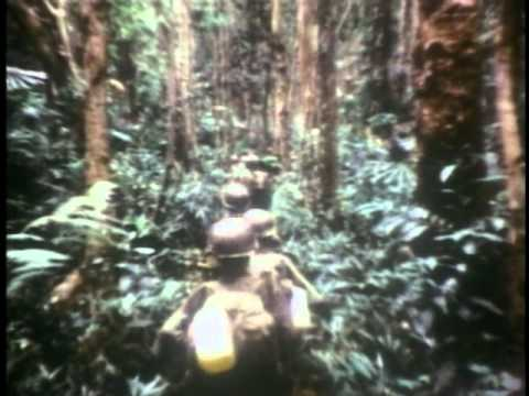 Vietnam War 1962 to 1975 - Part 1 of 3