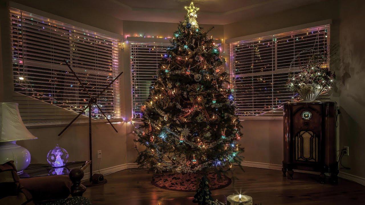 Christmas Tree Make Last Longer : Making christmas lights last longer