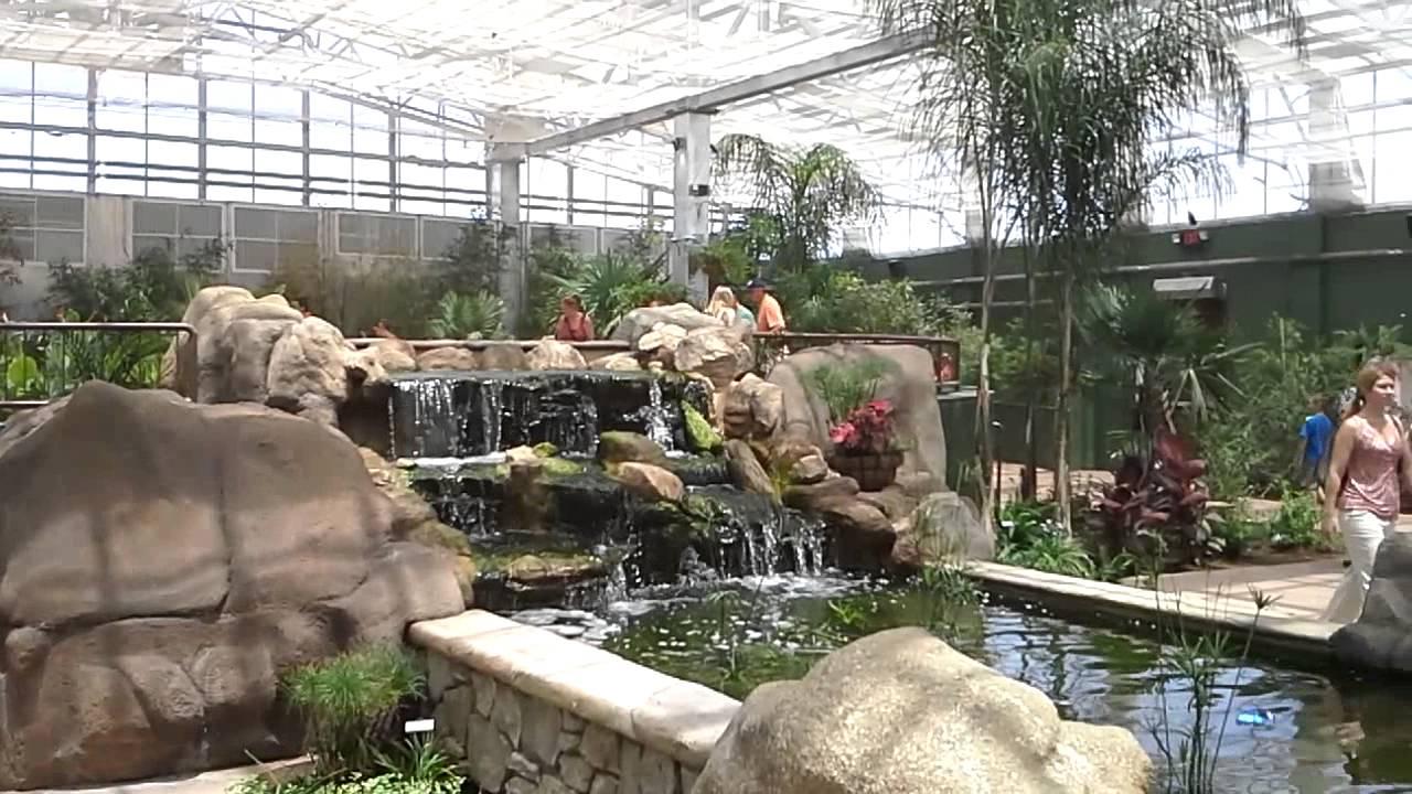 Butterfly Wonderland Museum