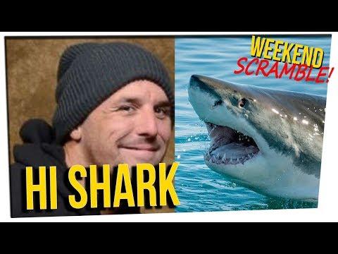 WS - Man Jumps Into a Shark Tank ft. Steve & Nikki, DavidSoComedy