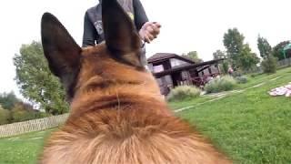 малинуа Барт.  атаки снятые на камеру GoPro