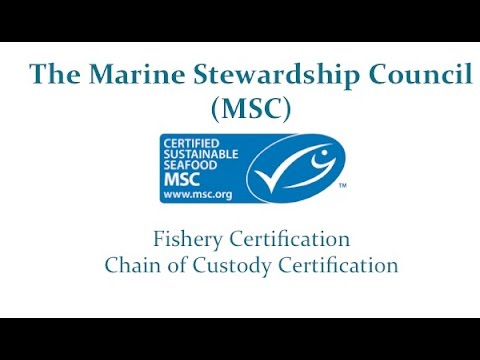 MSC-Third Party Certification