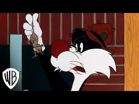 "Looney Tunes Super Stars: Sylvester & Hippety Hopper - ""Hop Look Listen"" - Fishing"