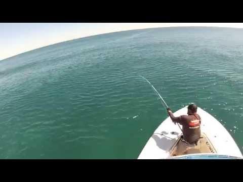 EL SYD, Ginei Lures, GT Fishing, Peak Sportfishing