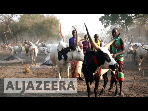South Sudan counts human cost of deadly cattle raids