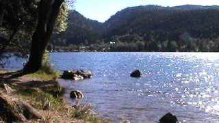 Randonnée dans les Vosges ( Lac de Longemer )