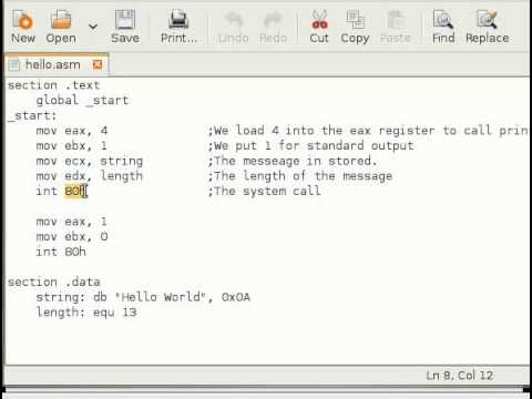 Assembly Language Tutorial #11 Making System Calls