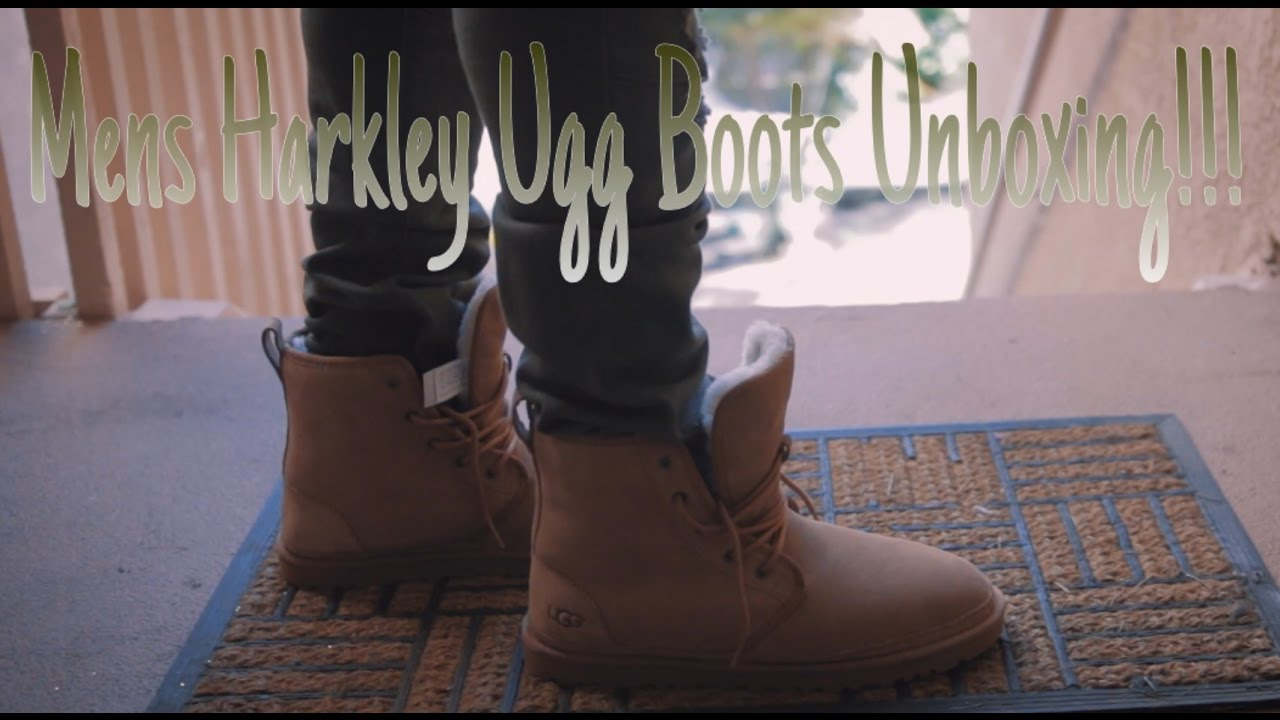 70e45810d01 Mens Harkley Ugg Boots Unboxing + Try on feet (Chestnut)