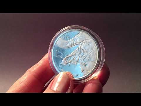 2017 Democratic Republic of Congo Silver 100 Gram Water Buffalo