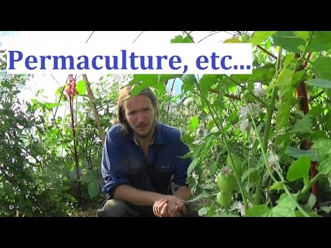 Permaculture - Magazine cover