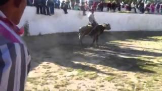 Tlaunilolpan hgo 15/05/2014 Rancho el solitarios oro rey de
