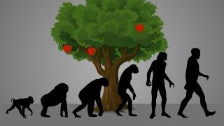 Especial: ¿por que dios creo al ser humano? - la teoría de evolución
