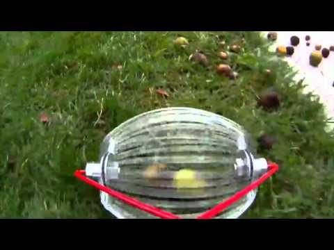 Garden Weasel Nut Gatherer Nut Gathering Tool Youtube