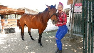 I BOUGHT MY GIRLFRIEND A HORSE! (HER DR...