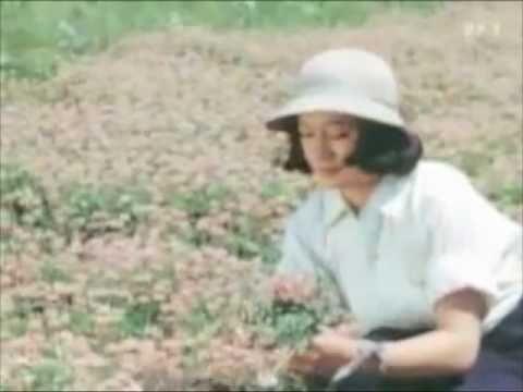 No Regrets For Setsuko Hara