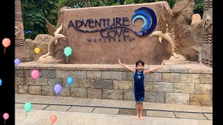 Adventure Cove Waterpark | Singapore
