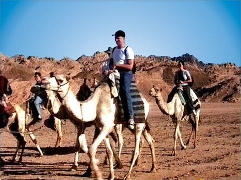 Sinai - Auf den Spuren des Moses 1 - Kameltrekking