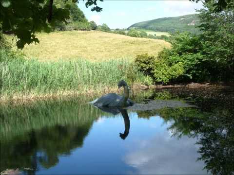 Adam Buxton - Loch Ness Song