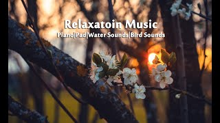 Relaxing Music: Sleep Music, Water Sounds, Bird Sounds, Mediation Music Vol. 1 By Ramil Raphael