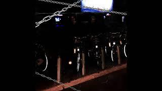 mlodyskiny x mlody yerba - rower