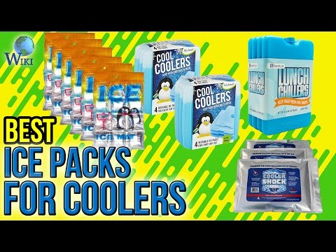 10 Best Ice Packs for Coolers 2017