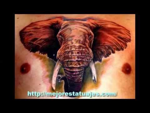 tatuajes para hombres en el pene