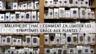 Maladie de Lyme : comment en limiter les symptômes grâce aux plantes ?