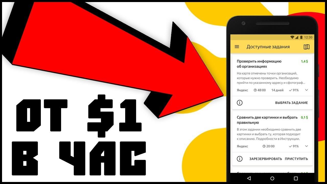 Сколько Денег можно Заработать на Яндекс Толока Новичку без Вложений