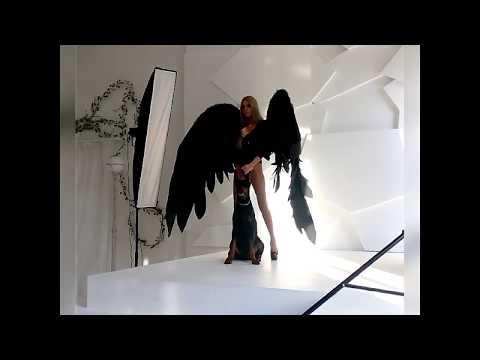 Фотосессия в крыльях с доберманом /Photo Session In The Wings With Doberman