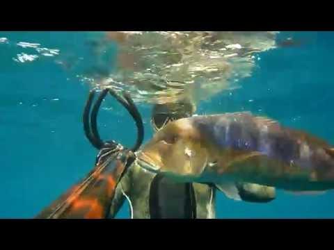 Spearfishing Dentex 7kg HD -  Tomislav Skalić (CROATIA)