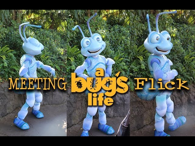 Meeting Flick from A Bug's Life at Disney's Animal Kingdom