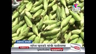 Suresh Dhulvade's sweetcorn farming success story