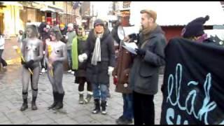 Susimielenosoitus, Antti Nylen ja Susitytöt viuhahdus 10.12.2010.mp4