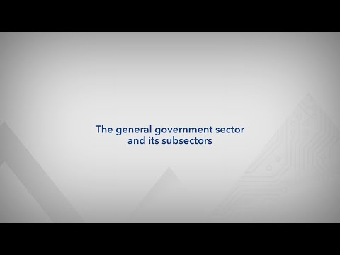 The general government sector and its subsectors